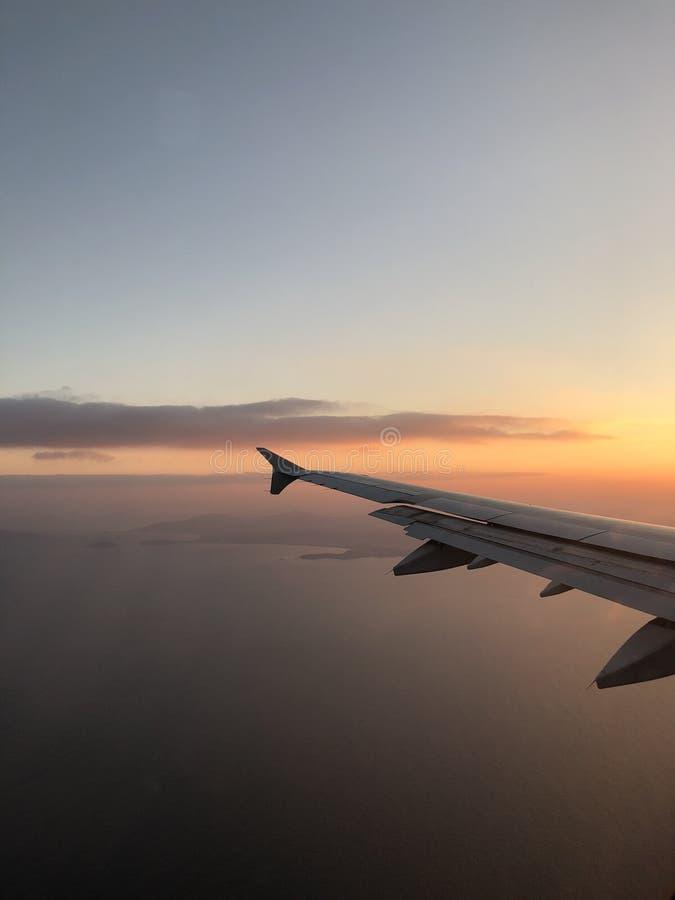 在飞行的日出 库存图片