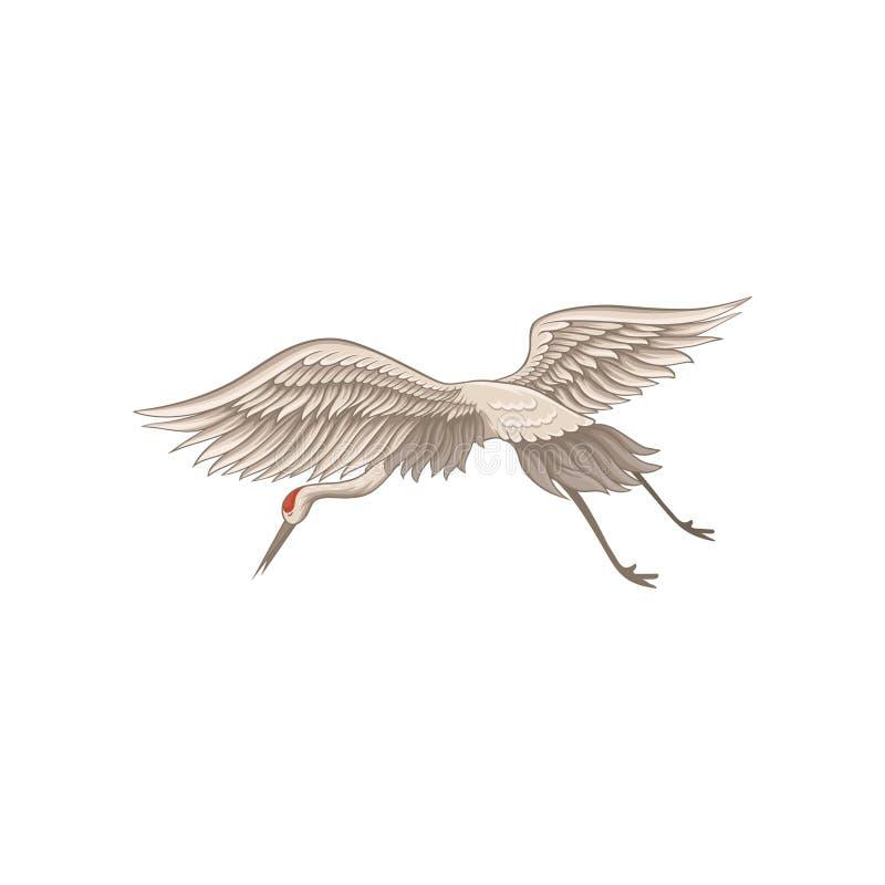 在飞行行动的起重机 狂放的生物 与红色皮肤的大鸟在头、长的额嘴、腿和脖子 平的传染媒介设计 皇族释放例证