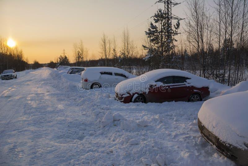 在飞雪以后的积雪的汽车在森林公路 免版税库存照片