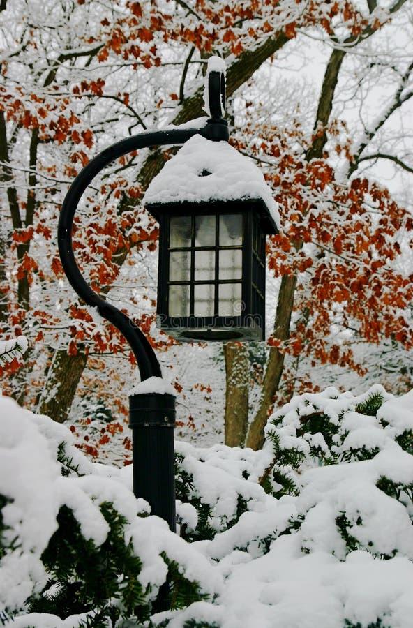 在飞雪以后的美丽的灯笼 免版税库存照片