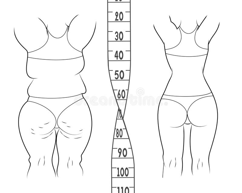 在饮食前后的结果 肥胖亭亭玉立的妇女 库存例证