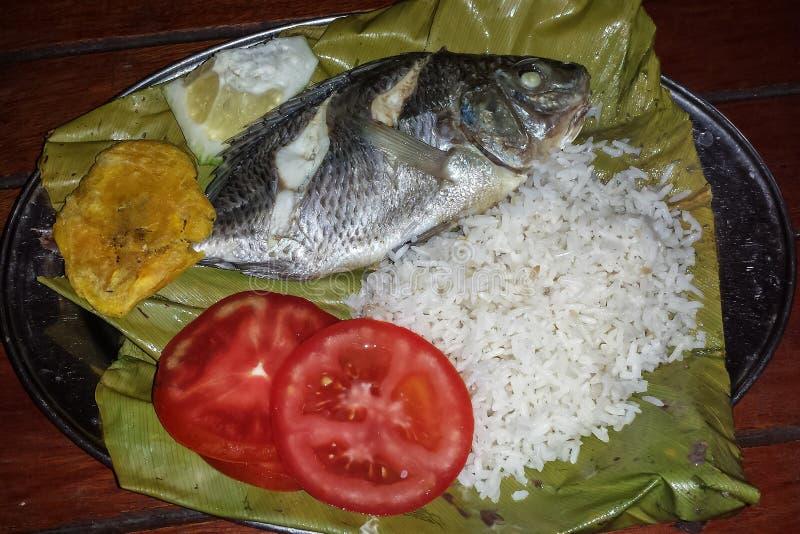 在香蕉包裹的典型的amazonic鱼离开,厄瓜多尔 免版税图库摄影