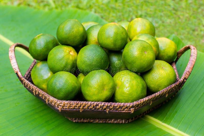 在香蕉叶子的新鲜的绿色蜜桔 库存照片