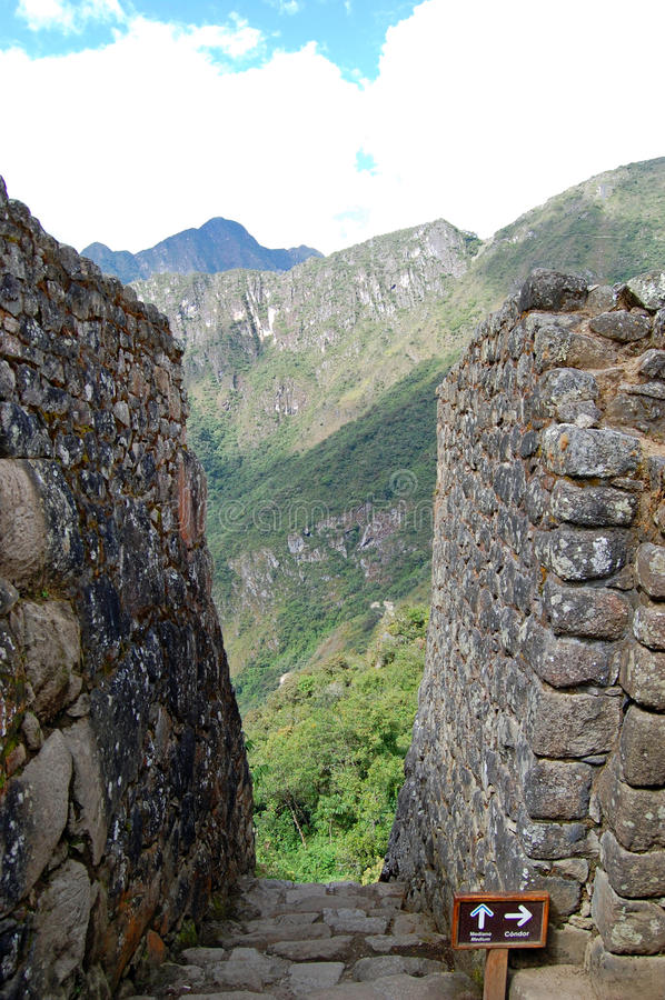 在马丘比丘的石台阶 库存照片