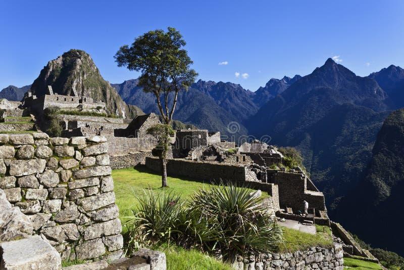 在马丘比丘,秘鲁的清早 图库摄影