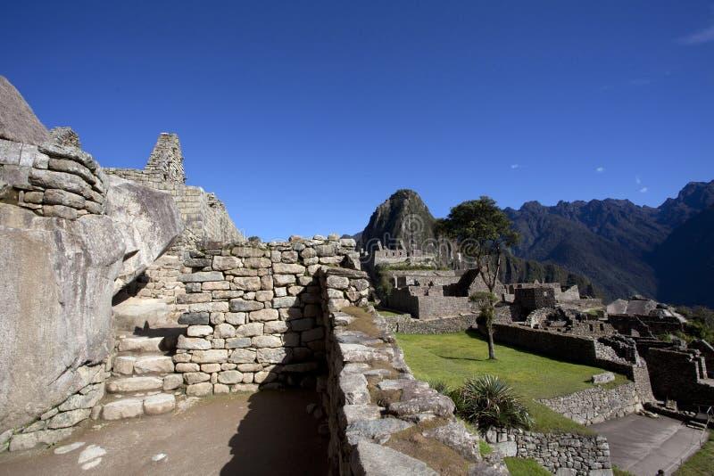 在马丘比丘,秘鲁的清早 库存照片