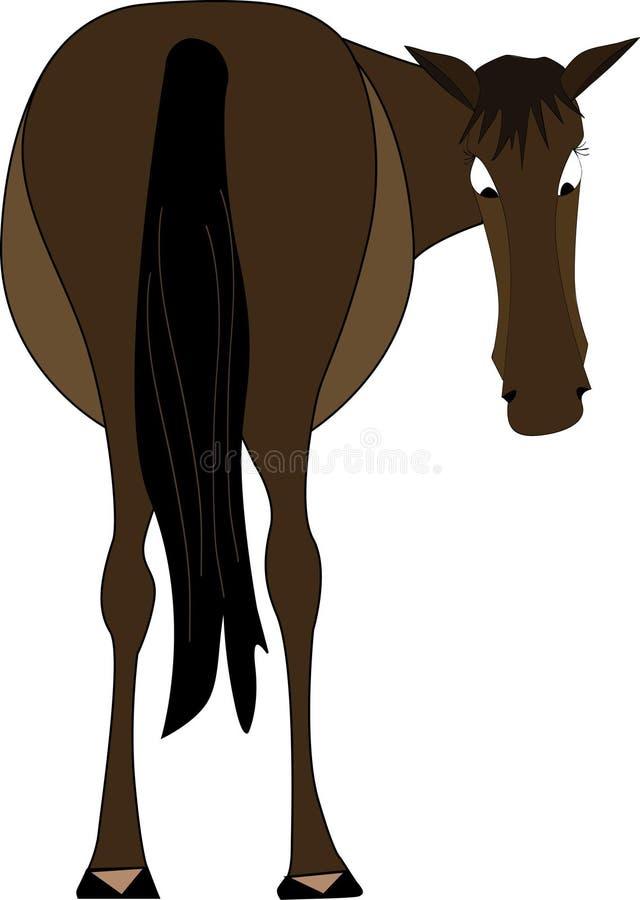 在马之后 向量例证