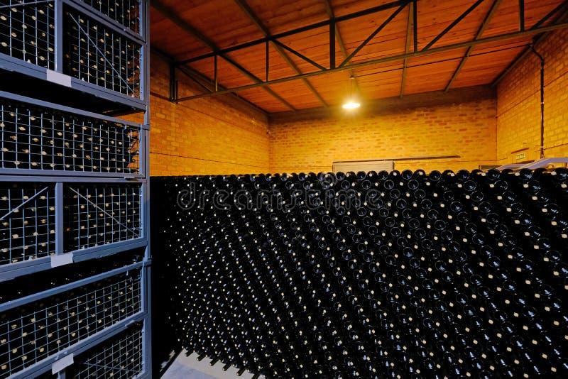 在马乐白克葡萄酿酒厂工厂,圣胡安,阿根廷的地窖里堆积的休息的酒瓶,也看见在门多萨 免版税库存照片