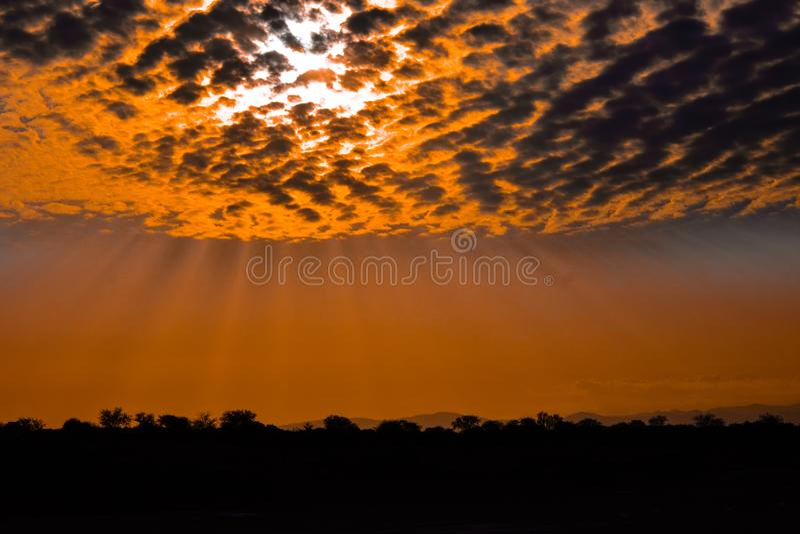 在马加迪湖,肯尼亚的金黄日落 免版税库存照片