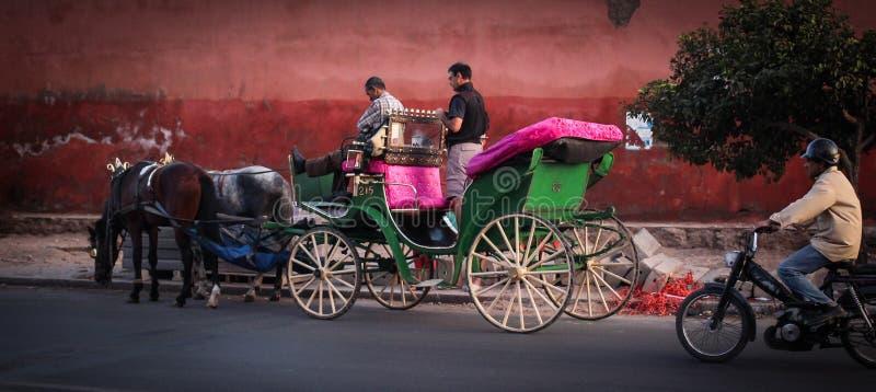 在马拉喀什街道的马支架  免版税库存照片