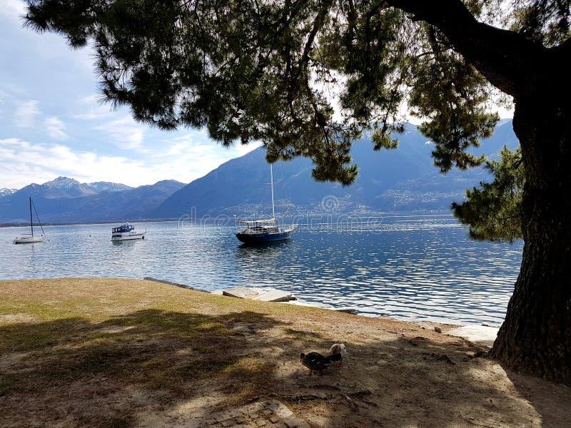 在马焦雷湖的船在3月 免版税库存图片