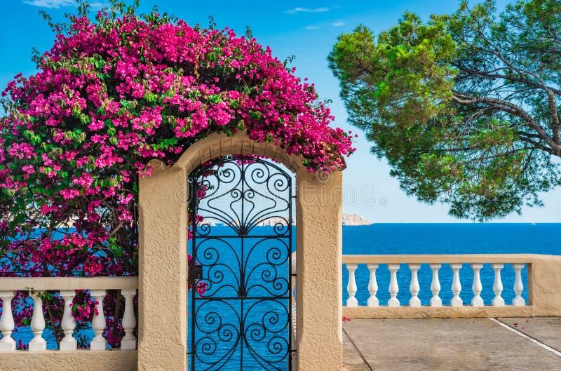 在马略卡海岛,西班牙上的美好的海岸海视图 免版税库存照片