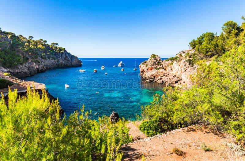 在马略卡海岛,西班牙上的美好的海湾海滩风景 库存图片