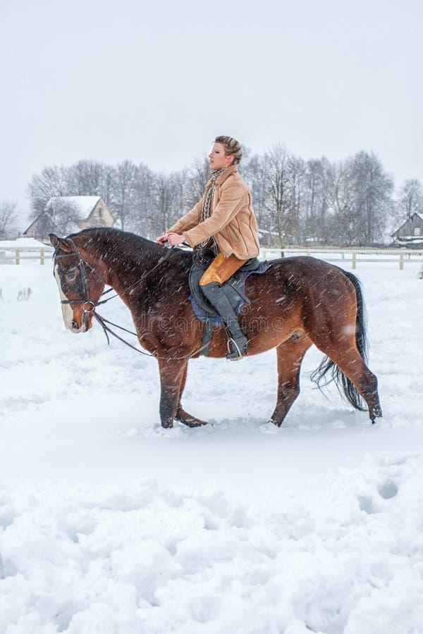 在马背上女孩在雪的冬天 库存照片