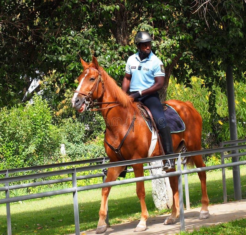在马背上警察在Loule葡萄牙 免版税库存照片