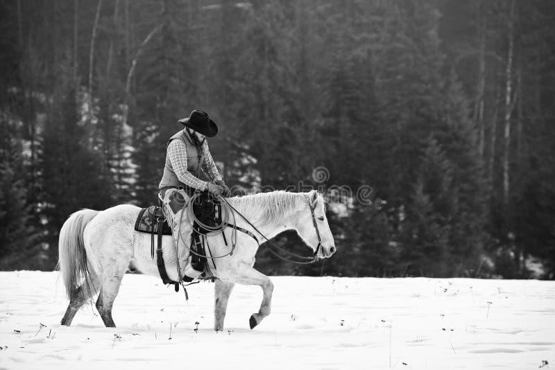 在马鞍疲倦的牛仔 免版税图库摄影