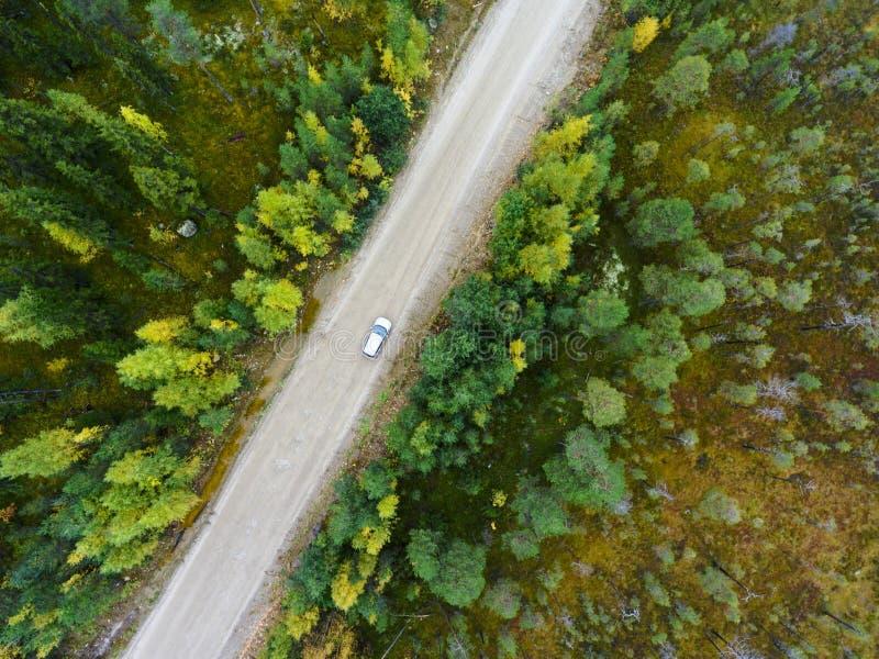 在驾驶沿土路的客车的顶视图在沼泽之间在秋天森林里 免版税库存照片