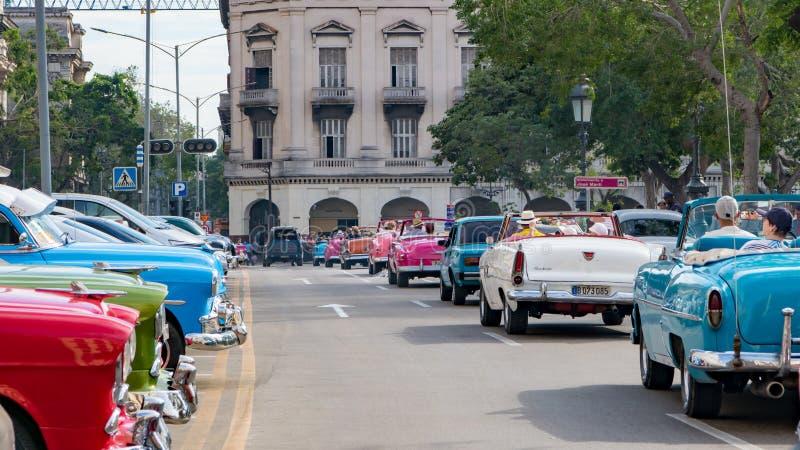 在驾驶通过哈瓦那,古巴街道的线的美国经典敞篷车汽车  免版税图库摄影