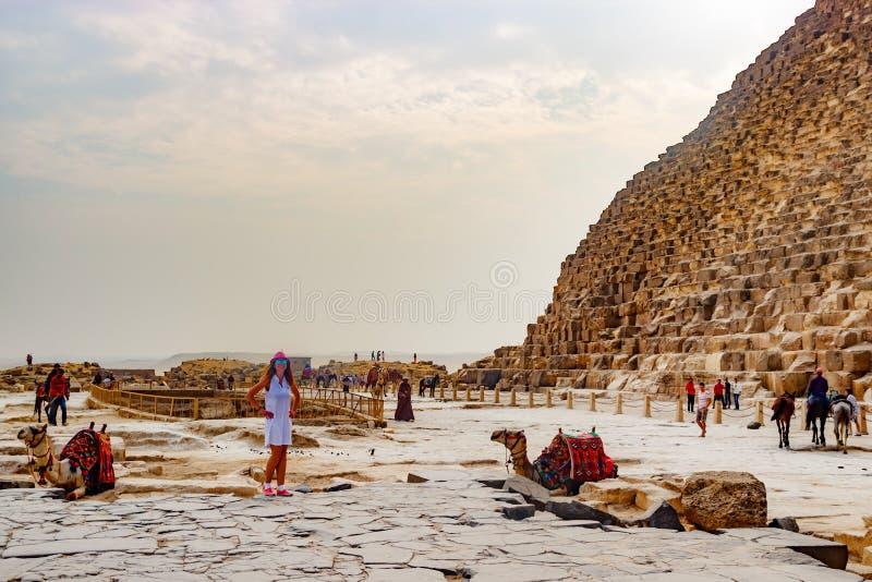 在骆驼和金字塔附近的女孩在开罗,埃及 图库摄影