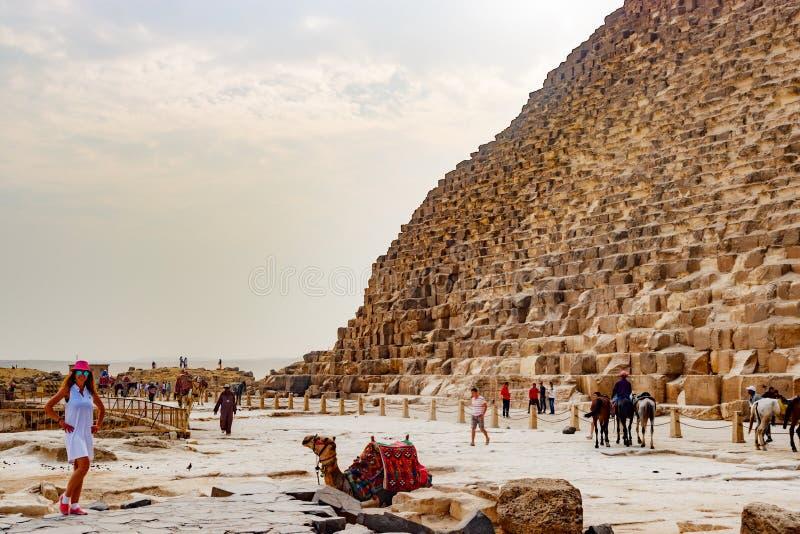 在骆驼和金字塔附近的女孩在开罗,埃及 免版税图库摄影
