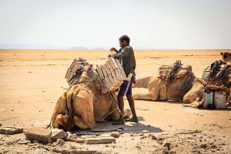 在骆驼的人装载的盐砖 免版税图库摄影