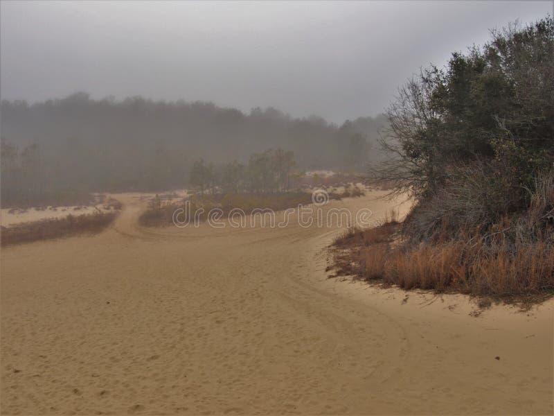 在骑师` s里奇国家公园的浓雾 免版税库存照片
