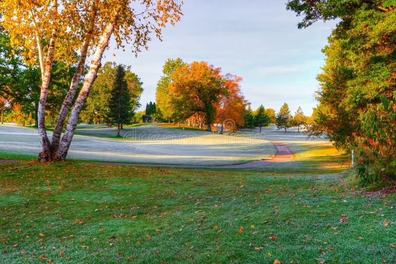 在高尔夫球场的秋天颜色 图库摄影