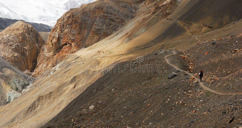 在高山的供徒步旅行的小道 库存图片