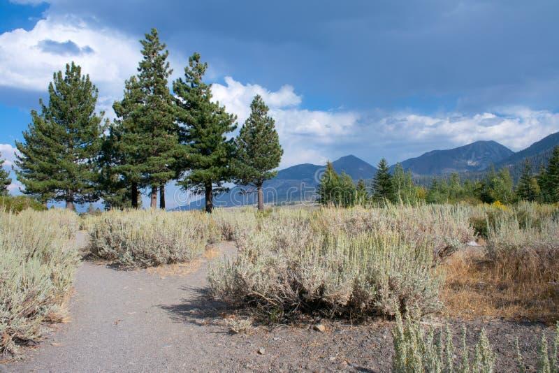 在高山脉山的看法 免版税库存图片