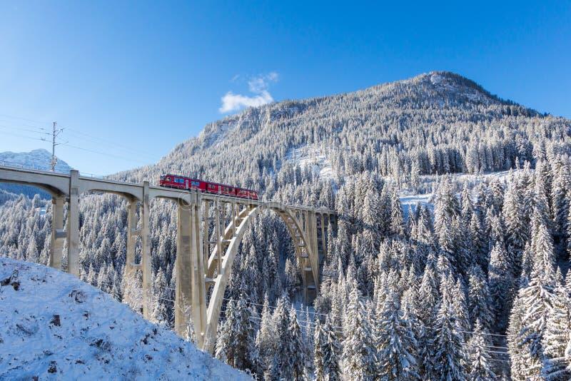 在高架桥Langwies,阳光,冬天的红色Rhaetian铁路火车 库存图片