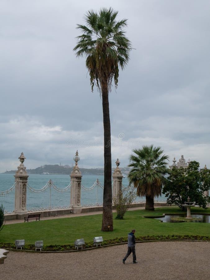 在高棕榈树和小走在多尔玛巴赫切宫的litte人的美好的风景看法 库存图片