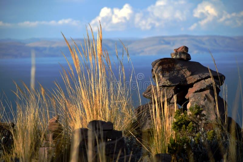 在高草和石头的日落光 图库摄影