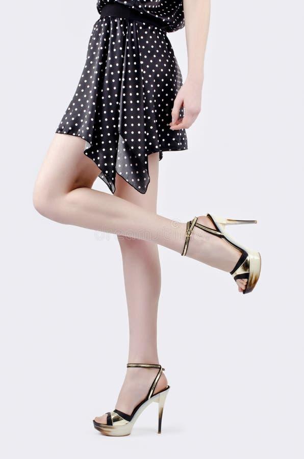 在高跟鞋的性感的长的腿 库存图片