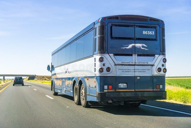 在高速公路的灵狮公共汽车 免版税库存照片