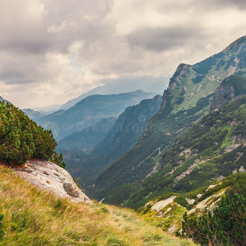 在高Tatra山的五个湖谷,波兰 免版税图库摄影
