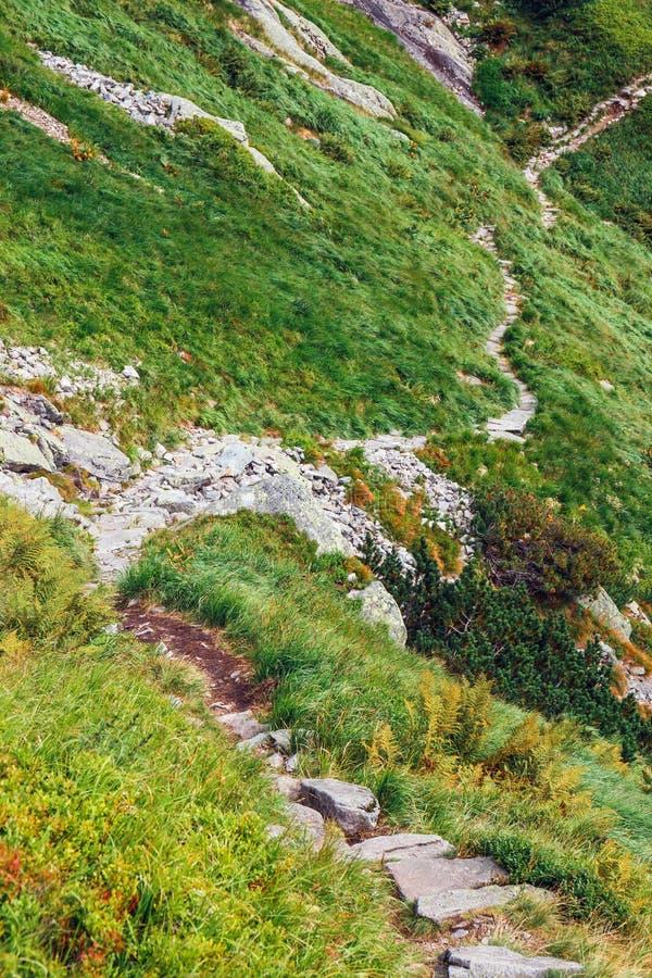 在高Tatra山的五个湖谷,波兰 免版税库存图片