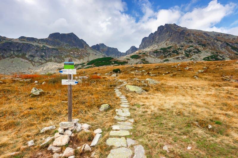 在高Tatra山的五个湖谷 库存图片