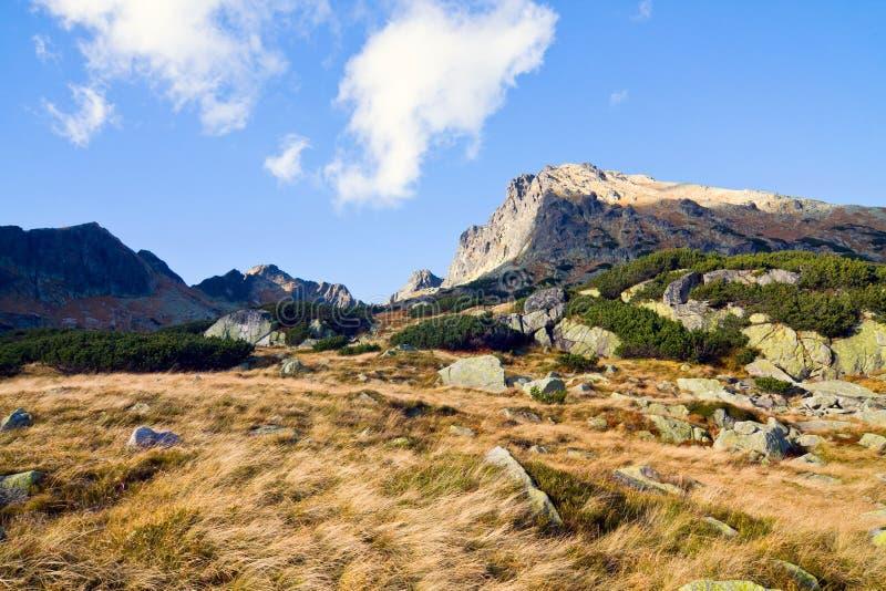 在高Tatra山的5个湖谷 图库摄影