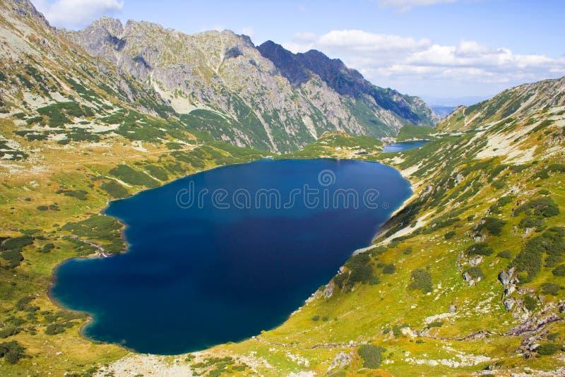 在高Tatra山的5个湖谷 库存图片