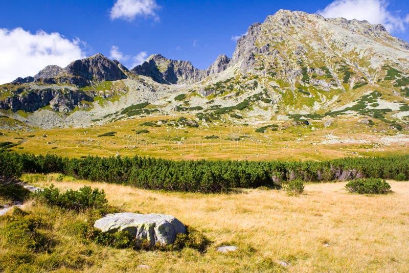 在高Tatra山的5个湖谷 免版税库存图片