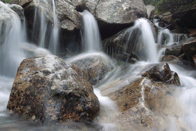 在高Tatras山的快速洪流 库存图片