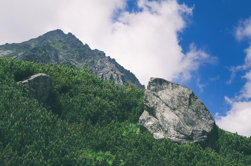 在高Tatras的巨型岩石 免版税图库摄影
