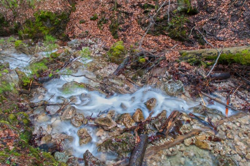 在高Tatras的瀑布 免版税库存照片