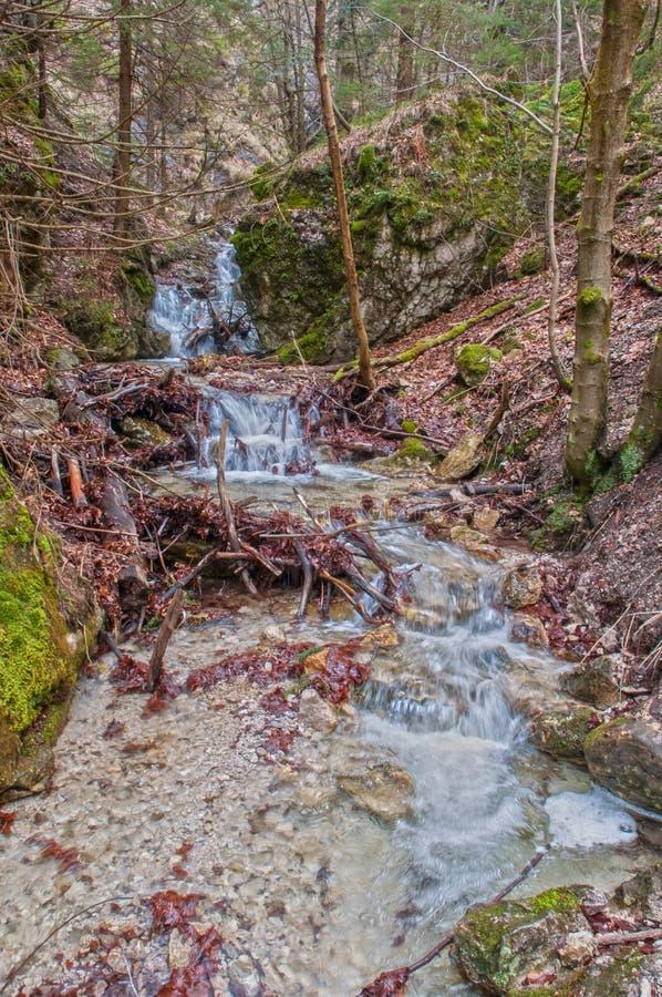 在高Tatras的瀑布 免版税库存图片