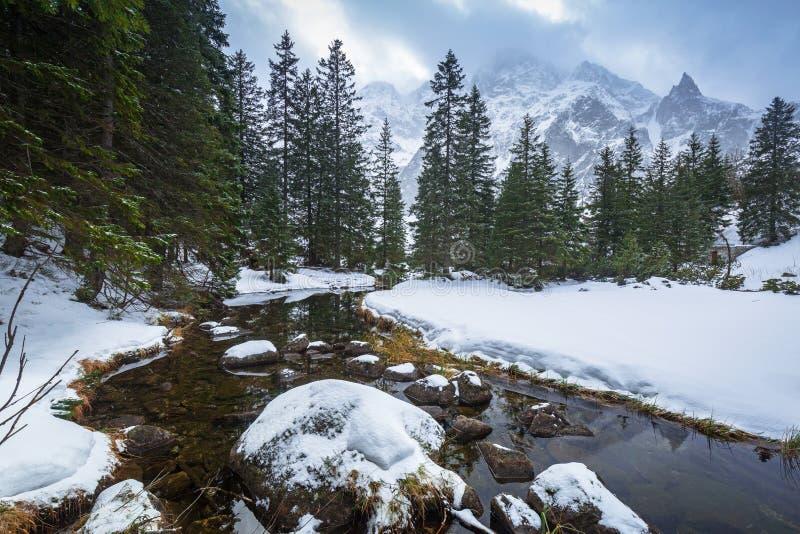 在鱼小河的美好的Tatra山景 免版税库存图片