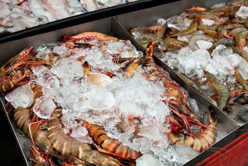 在鱼市上的新鲜的小龙虾在婆罗洲马来西亚 库存图片