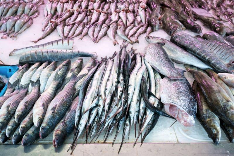 在鱼贩子的鲜鱼 免版税库存照片