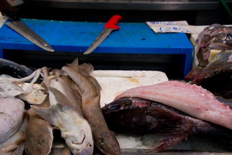 在鱼贩子` s市场上的岩石三文鱼失去作用 免版税库存照片
