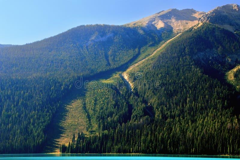 在鲜绿色湖,幽鹤国家公园,加拿大的雪崩道路 免版税库存图片