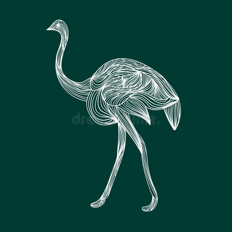 在鲜绿色背景的驼鸟 库存例证